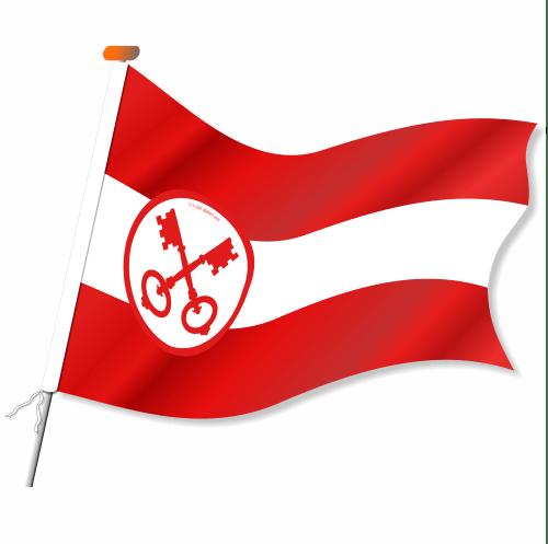 Boot-vlag Leiden, Leidse boot vlag